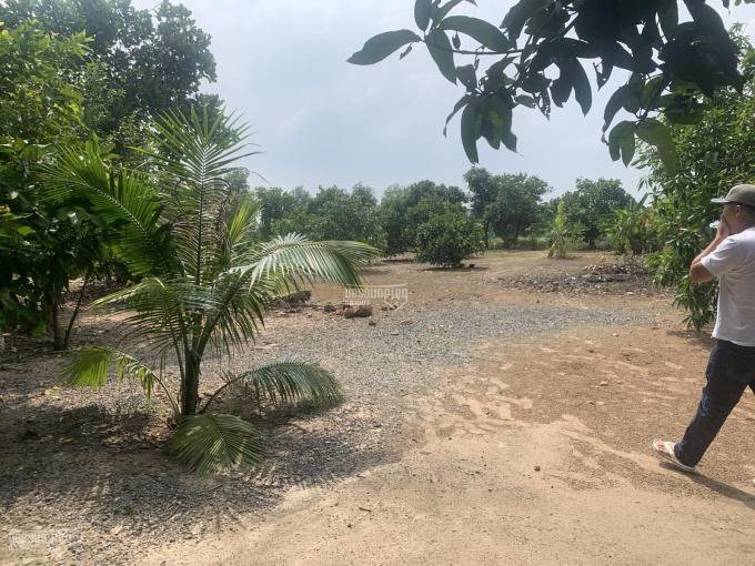 Bán đất mặt tiền Tỉnh Lộ 15, (63.85 x 100 = 6.520m2) Xã Phú Hoà Đông, Củ Chi, TPHCM ảnh 0