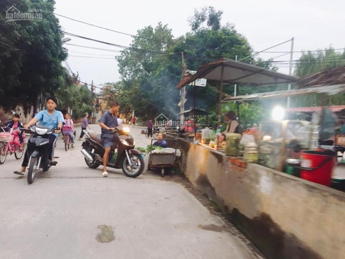 Bán 50m2 đất SĐ thổ cư, Đại Áng - Thanh Trì, Ngọc Hồi, giá rẻ 0862859598 ảnh 0