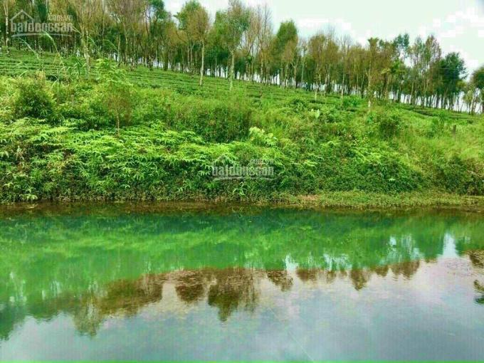 Bán đất vùng ven Bảo Lộc và Bảo Lâm, giá đầu tư thị trường 750 triệu - 1.5 tỷ, đường rộng sổ riêng ảnh 0