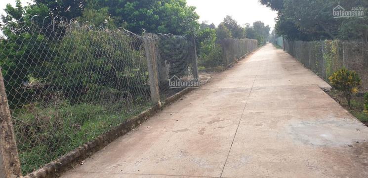 Gia đình cần bán 3000 m2 đất quy hoạch thổ cư, ấp 1 Bình Lộc TP. Long Khánh Đồng Nai, LH 0933355189 ảnh 0