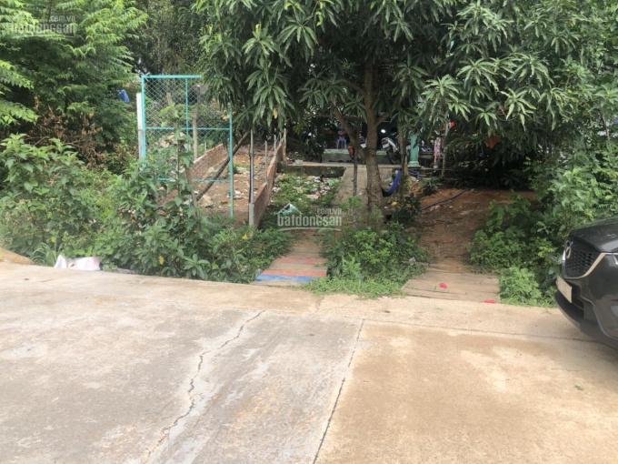 Bán đất Cây Sao, Phú Quốc, DT 1120m2 giá 6.5 tỷ, 100m2 thổ cư ảnh 0