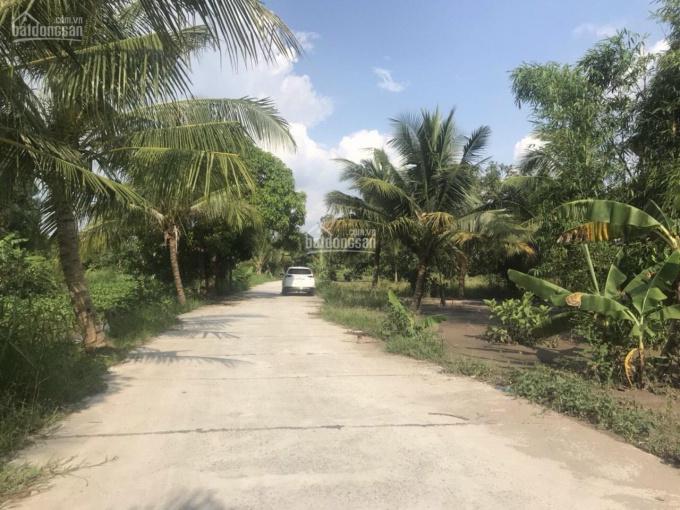 Bán đất đẹp 4330m2 lộ giao thông nông thôn 5m giá rẻ đầu tư. LH 0909491373 ảnh 0