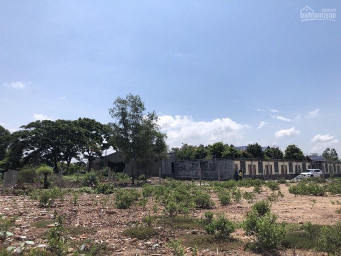 Gia đình cần bán đất Phước Thắng - P12 - sổ riêng - 25x20m, DT 500m2 - hẻm ô tô ảnh 0