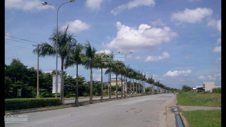 Bán đất tại đường Trần Minh Trí, P. Thanh Bình, TP Biên Hòa, Đồng Nai. Giá 870tr/100m2, SHR ảnh 0