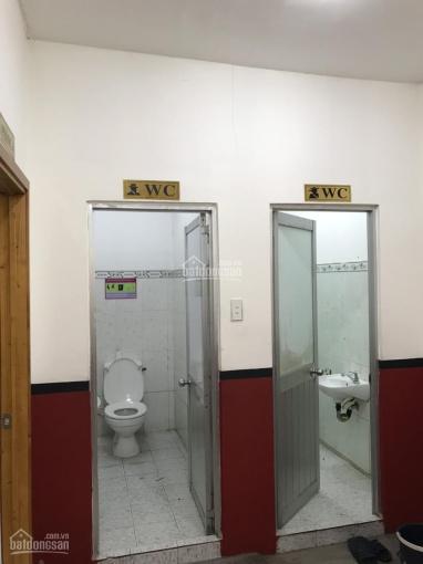 Cho thuê nhà NC 3 MT đường Nguyễn Thái Sơn, Gò Vấp DT 6.5*25m, hạ giá còn 45tr/th. LH: 0931580581 ảnh 0