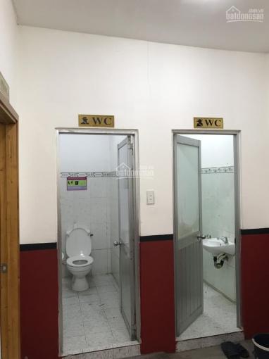 Cho thuê nhà NC 3 MT đường Nguyễn Thái Sơn, Gò Vấp DT 6.5*25m hạ giá còn 45tr/th. Lh: 0909890500 ảnh 0