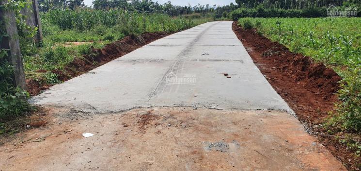 Bán đất Phường Ea Tam, đối diện Bến xe Phía Nam ảnh 0