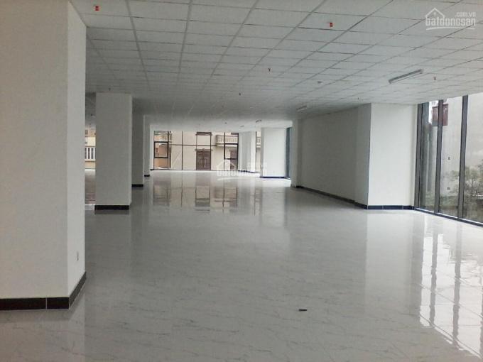 Bán sàn văn phòng, thương mại tại phố Liễu Giai, diện tích 550 - 1200m2 giá từ 38 triệu/m2