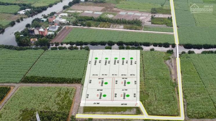 Khu nhà vườn (CLN) Đê Ông Kèo, Phước Khánh, 1,3 tỷ/1000m2 đường ô tô, khu dân cư hiện hữu ảnh 0