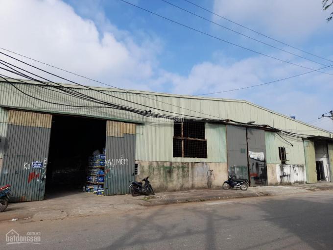 Cho thuê kho xưởng tại xã Ninh Sở, huyện Thường Tín, TP Hà Nội ảnh 0