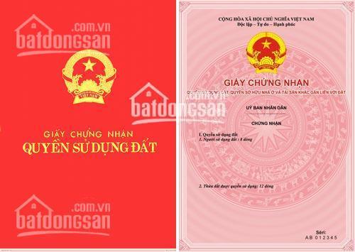 Chính chủ cần bán gấp 4 lô đất xã Ninh Thắng, Hoa Lư, Ninh Bình, DT 1232m2, MT: 28m. LH: 0961820768 ảnh 0