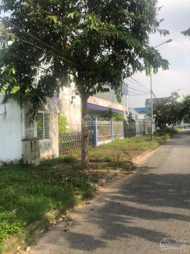 1000m2 đất thổ cư mặt tiền đường số 8 khu dân cư Nam Long thành phố Cần Thơ, ngang 45m ảnh 0