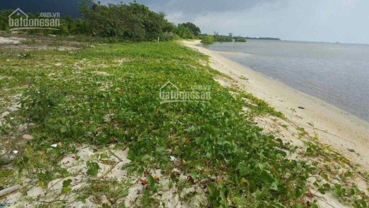 Bán đất biển Cây Sao Phú Quốc 2000m2, giá 13 tỷ/công ảnh 0