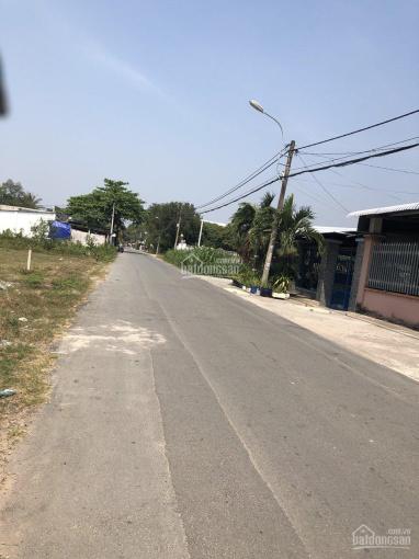 Bán 9000m2 đất mặt tiền đường Nguyễn Thị Đành, Xuân Thới Sơn, Hóc Môn ảnh 0