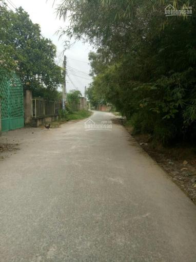 Bán lỗ lô đất Nhơn Trạch, thổ cư, đường lớn, gần đường dự phóng, dân cư đông sát chợ, 280tr/1000m2 ảnh 0