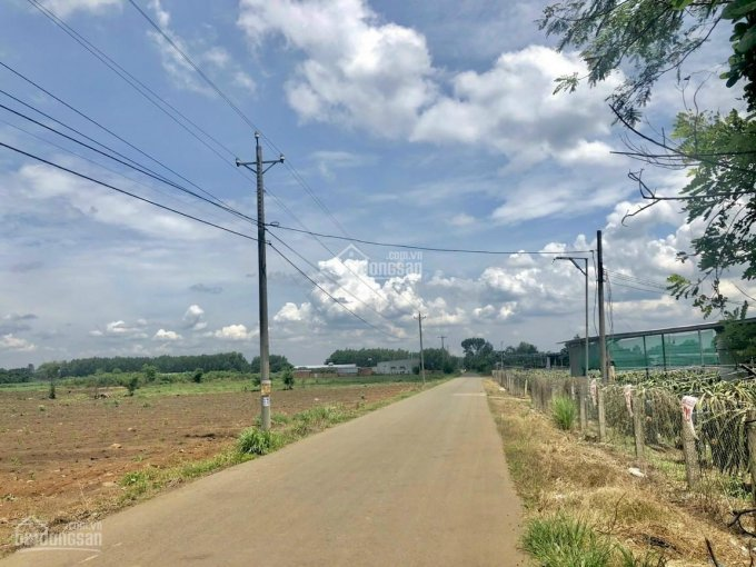 Bán 5 sào đất ngay KCN Định Quán, nằm mặt tiền đường ô tô, giá 580 triệu/sào, có sổ từng sào ảnh 0