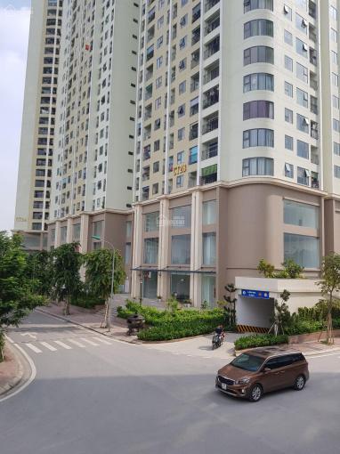 Cần vốn bán gấp sàn thương mại, văn phòng chung cư Gelexia 88 m2 giá 22 triệu/m2. Sổ vĩnh viễn ảnh 0