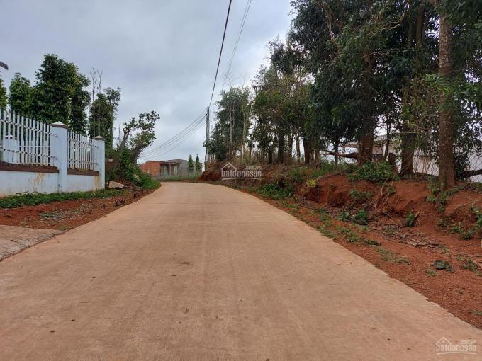 Bán nhà vườn khu nghỉ dưỡng Đắk Nông chỉ 500 triệu, DT: 6000m2, LH: 0837143948