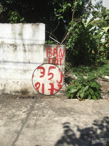 Đất thôn Đại Lộc, Đại Hợp, Kiến Thụy, Hải Phòng ảnh 0