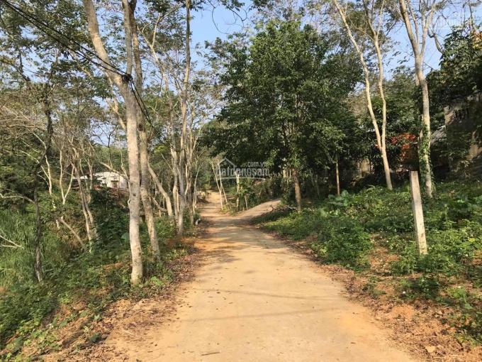 Sang nhượng trang trại nghỉ dưỡng 4ha thành phố Tuyên Quang ảnh 0