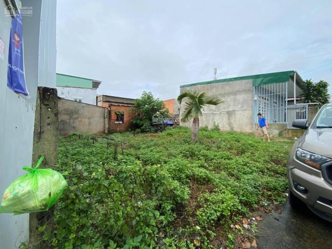 Chính chủ bán đất vị trí vip trung tâm Buôn Ma Thuột, sổ hồng, full đất ở đô thị, 68.8m2 ảnh 0