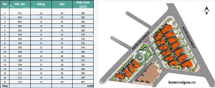 Bán biệt thự King Crown Thảo Điền, căn 300m2 view công viên đẹp giá 55 tỷ. LH 0901838587 ảnh 0