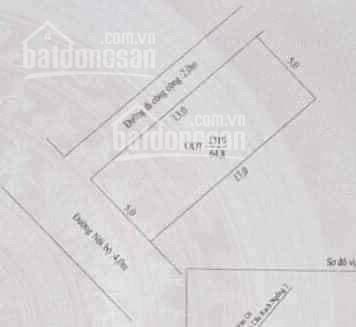 Bán nền góc 2 MT hẻm nhánh Lộ Ngân Hàng (Trần Nam Phú) Cách MT~100m, DT 5x13m ảnh 0