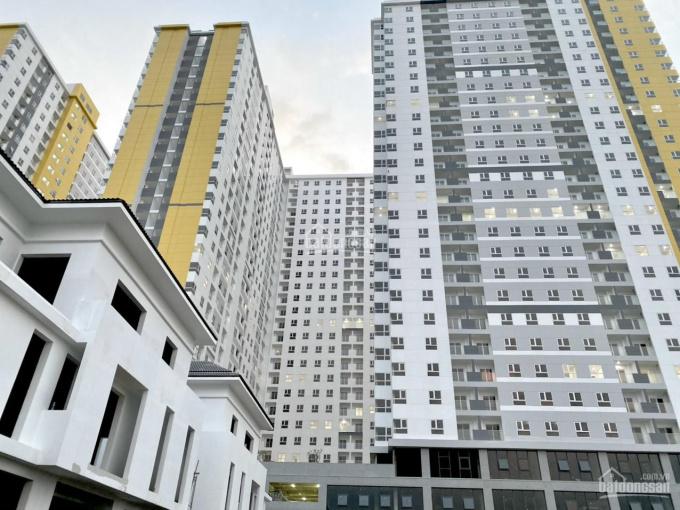 Chủ nhà kẹt tiền mùa Covid cần bán gấp căn A.20-11 giá 2.3 tỷ DT: 72.25m2. LH 0902.909.210 ảnh 0