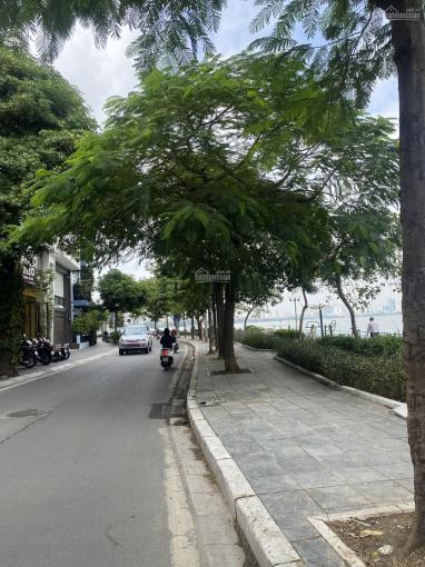 Chính chủ bán tòa 5 tầng - view hồ - MP Từ Hoa - Quảng An - Tây Hồ - Giá: 87 tỷ, DT: 180m2 ảnh 0