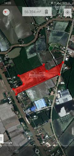 Bán 6.2 ha đất xây xưởng, mặt tiền QL N2 Thạnh Hóa, tỉnh Long An ảnh 0