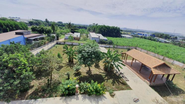 Bán 4 sào đất gần KCN Định Quán, giá 520 triệu/sào, Có bưởi và quýt trên đất, LH: 0355 035 085 ảnh 0