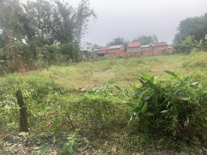 Bán đất rẻ, ấp Suối Ông Đình, xã Trà Vong, huyện Tân Biên, Tây Ninh ảnh 0