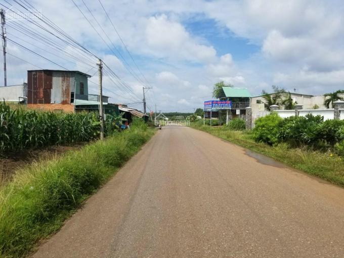 Đất mặt tiền đường Phước Bình 97x102m (300m2 thổ cư) giá 25 tỷ, LH 0902930432 ảnh 0