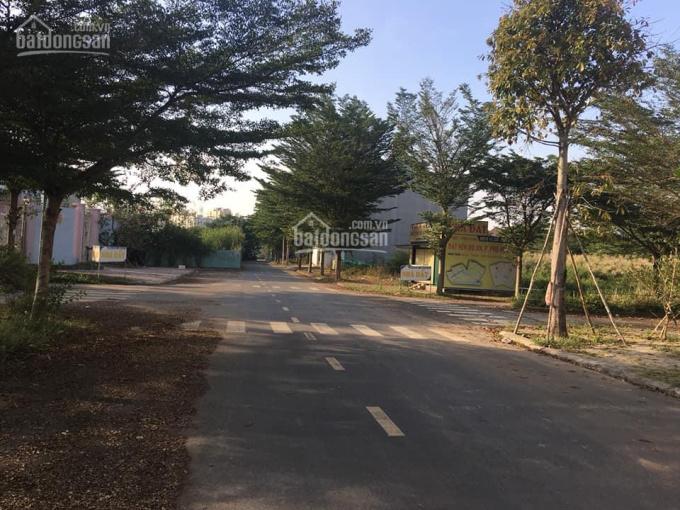 Bán đất nền dự án Thời Báo Kinh Tế Sài Gòn Quận 9, giá 41 triệu/m2 ảnh 0