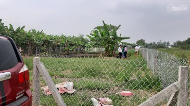 Bán 500m2 đất vườn Mỹ Lộc - Cần Giuộc giáp Bình Chánh chỉ 1,5 tỷ, đường xe hơi, SHR. Giá: 1,5 tỷ ảnh 0