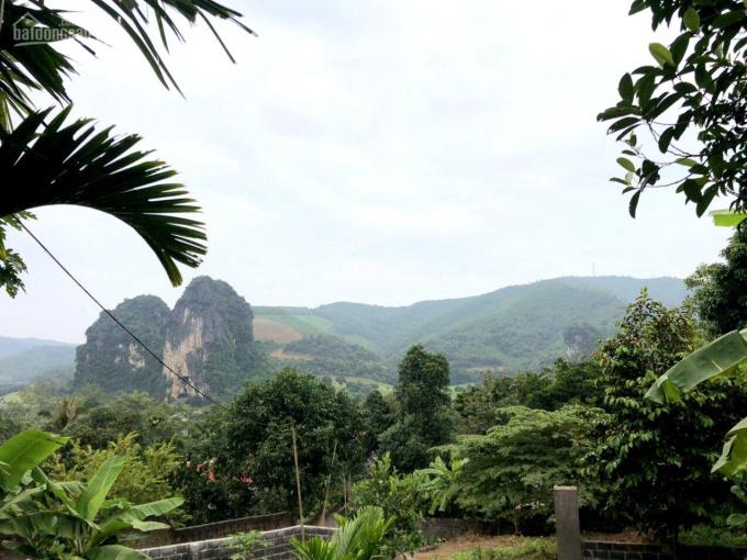 Bán nhanh 4.238m2 đất thổ cư cạnh sân golf Phượng Hoàng tại Lương Sơn, Hòa Bình ảnh 0