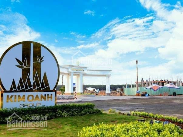 Đất sân bay Long Thành 16.8 triệu/m2 sổ đỏ trao tay mặt tiền ĐT 769, cam kết gói lợi nhuận 24% ảnh 0
