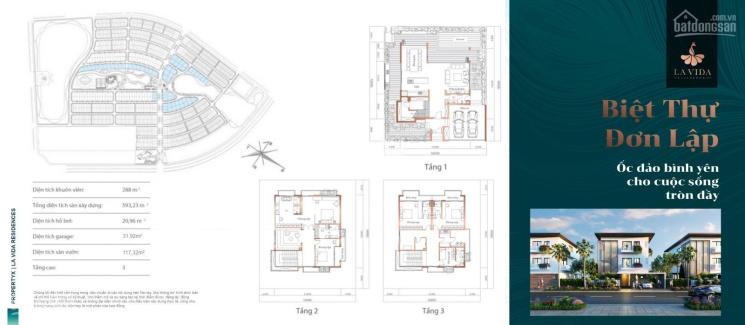 Hưng Thịnh mở bán dự án biệt thự Lavida mặt tiền đường 3/2 TP Vũng Tàu giá đầu tư, LH 0902537816 ảnh 0