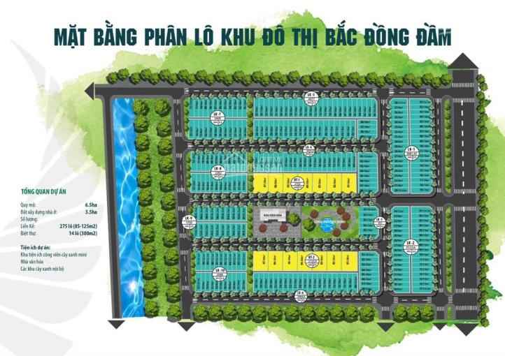 Cực hot! Phân phối chính thức đất nền đấu giá dự án KDC Bắc Đồng Đầm - Xã Tây Sơn - Huyện Tiền Hải ảnh 0