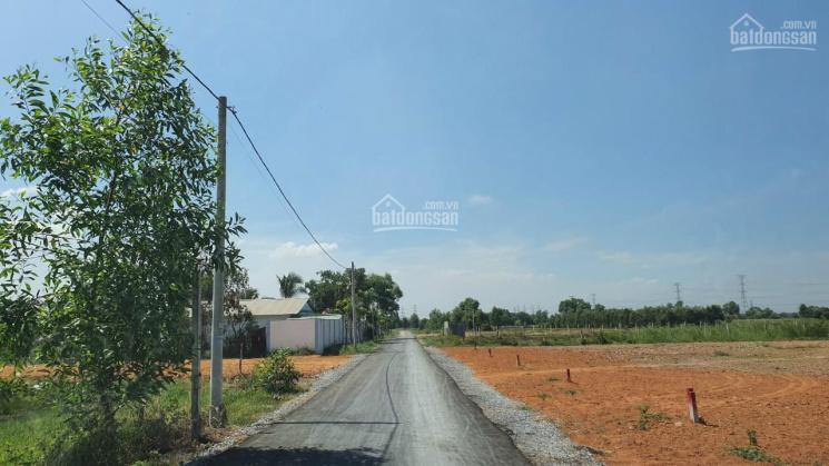 Đất 900m2 giá 3,65 tỷ mặt tiền đường 301, Nguyễn Kim Cương, Tân Thạnh Đông ảnh 0