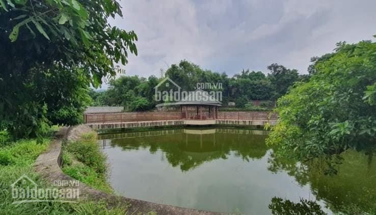 Bán nhà vườn tại Lương Sơn, Hòa Bình. Sẵn mẫu ao đang thả cá, nhiều cây ăn quả