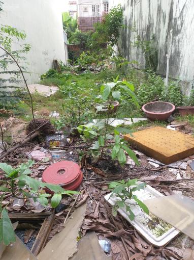 Cho thuê đất 4,5x25m 10tr/th đường Số 13 (Gần chung cư The Vista), An Phú, Q2