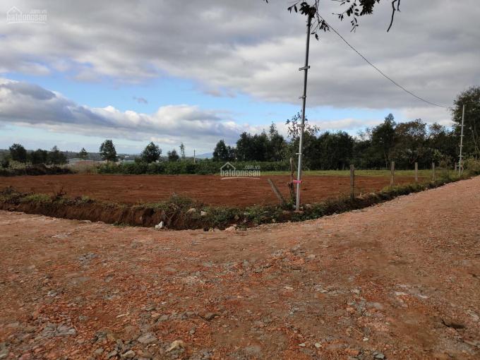 Đất trung tâm Plei Ku khu du lịch đồi thông với nhiều dự án phát triển ảnh 0