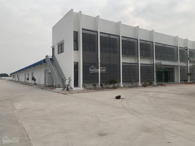 Chính chủ bán gấp nhà máy 2ha tại Kim Thành, Hải Dương