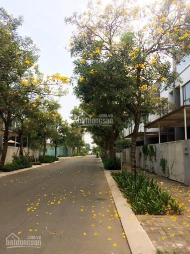 Bán đất hướng Đông Nam mặt tiền khu xây cao trung tâm An Phú, Q2. DT 8x20m giá 20,9 tỷ ảnh 0