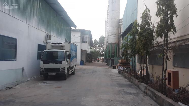 Cho thuê kho xưởng diện tích 500m2 đến 3000m2, giá tốt tại xã Phong Phú, huyện Bình Chánh, TP. HCM