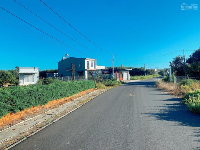 Bán 640m2 - đường nhựa 8m Tam Phước - gần trường học - 1,6x tỷ ảnh 0
