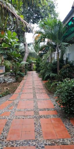 Cho thuê nhà trọ cao cấp sân vườn khuôn viên thoáng mát