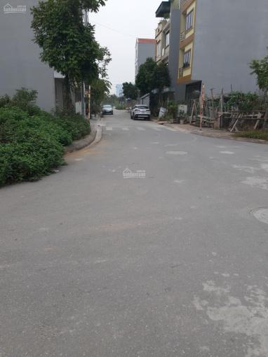 Bán đất chia lô khu đấu giá Tứ Hiệp, Thanh Trì, 60m2 mặt tiền 4.62m, giá 4.7 tỷ ảnh 0