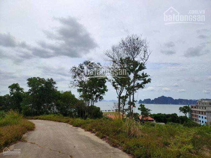 Công ty cần bán một số ô đất biệt thự tại khu biệt thự đồi Tuần Châu, Hạ Long ảnh 0